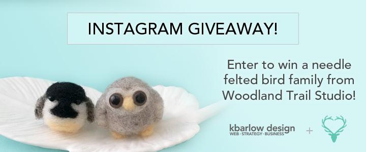 Instagram Giveaway!