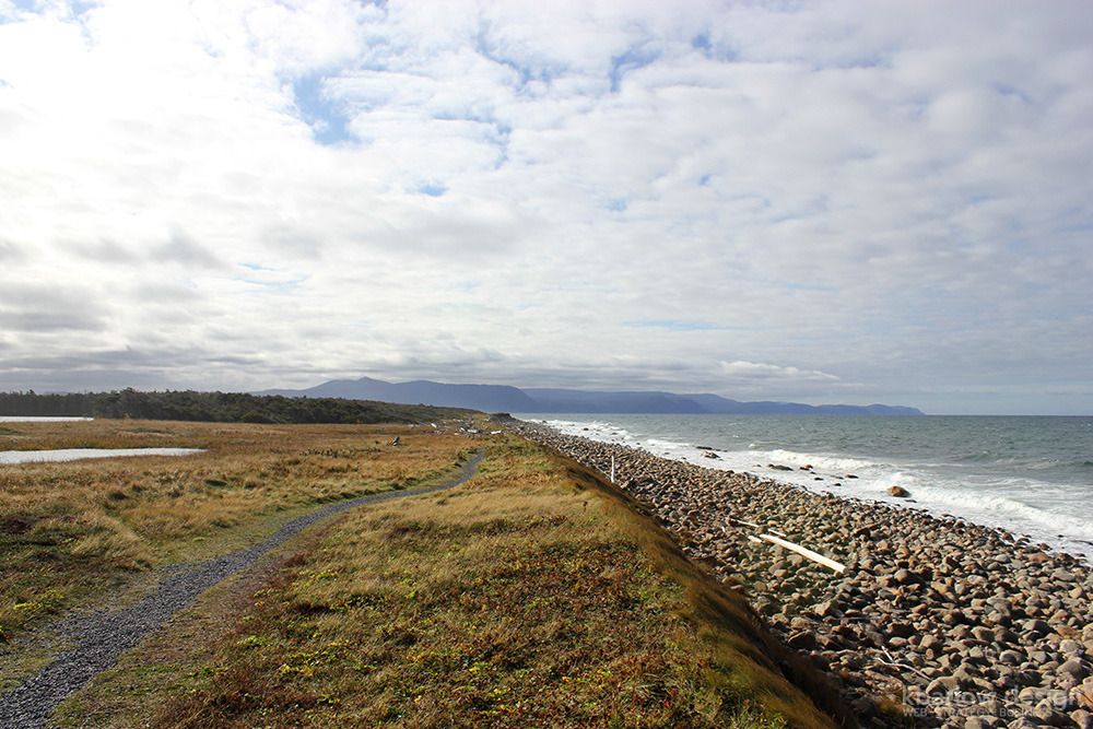 nl gros morne green point coastal trail | kbarlowdesign.com blog